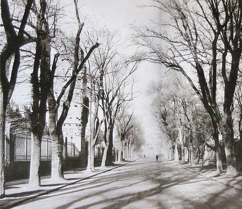 Via di San  Gregorio