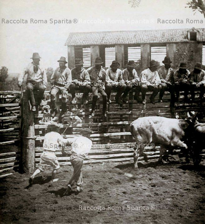 Agro Romano