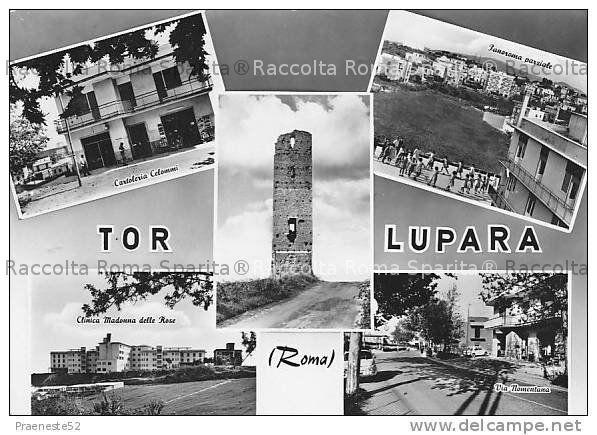 Tor Lupara