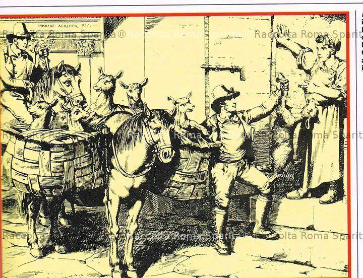 Venditore di capretti