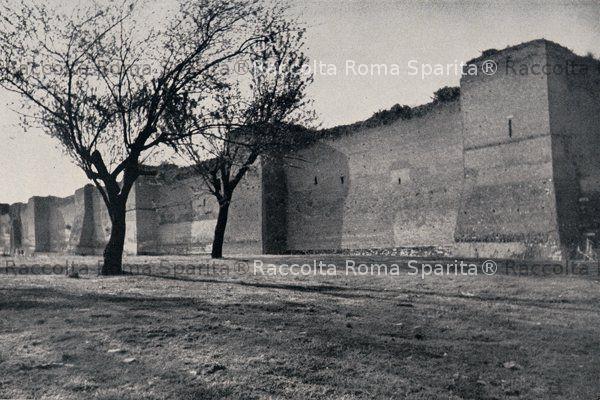 Mura Latine
