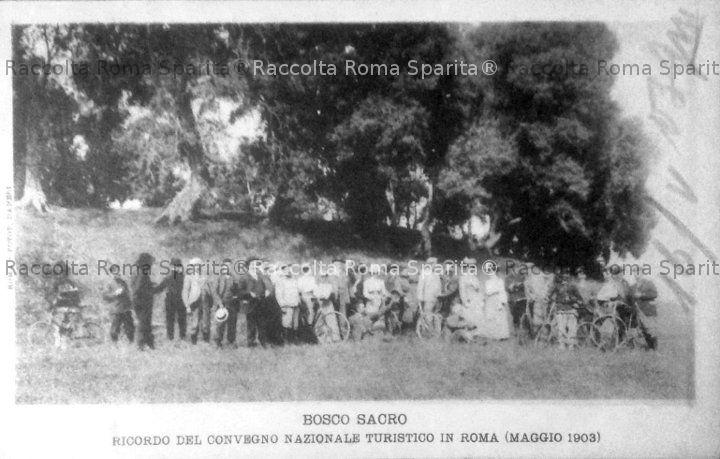 Caffarella - Bosco Sacro