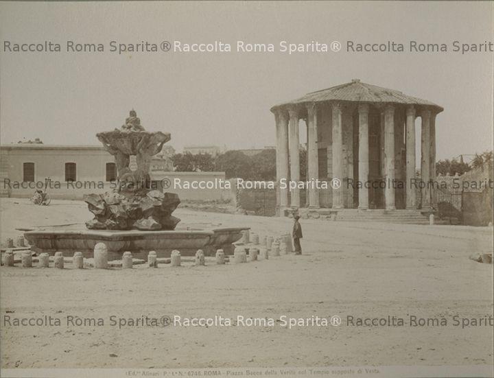 romasparita_sds2975